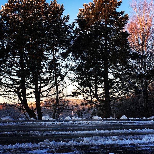 1_vinter